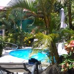 Foto de Coyaba Tropical Bed and Breakfast - Adults Only