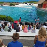 Sea Life Park Hawaii