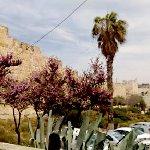 Photo of King David's Tomb