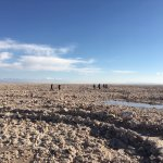 Excursion to the Salt Flats
