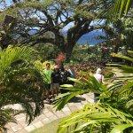 Foto de Island Paradise Tours