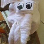 Elephant made with towels