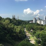 View from Henderson waves (high up)