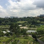 View across Hort Park agricultural gardens