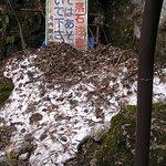 入口横の残雪