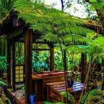 Photo de Volcano Rainforest Retreat