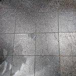 DSC_4351_large.jpg