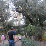 Photo de Ksar Elkabbaba