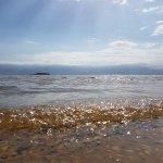 Photo of Prima Oasis Dead Sea