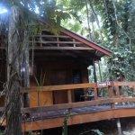 Our jungle lodge