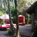 Photo de Maruba Resort Jungle Spa