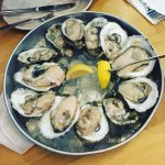 delicious and fresh oysters - happy hour