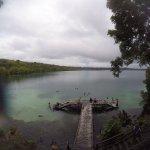 Sting-less Jellyfish Lake