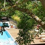 piscine et spa de nage