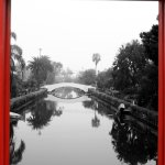 Window into the Venice Canals
