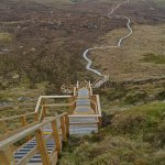 The local Culcaigh boardwalk-so popular now with our guests! For best prices for staying with us