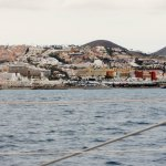 Foto de Viajes en barco Freebird
