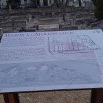 La maison à l'Apollon Lauré