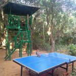 Foto di Neemrana's - Verandah in the Forest