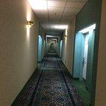 Photo de Hampton Inn by Hilton Ottawa