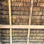 Photo de Bamboo Garden Bar and Lodging