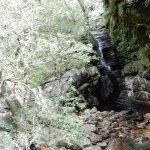 Photo of Jonkershoek Nature Reserve