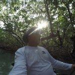 Kayak Shack Mangrove Trail