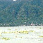 Isla de Mezcala
