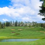 scenic and playable course