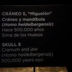 Explicacion Craneo Miguelon