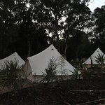 Love love this campground. It's pretty big, with loads of different options from Glamping to cab