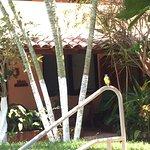 Photo of Casamar Suites Hotel