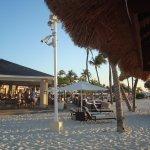 Фотография Bucuti & Tara Beach Resort Aruba