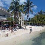 Photo of Shark Beach