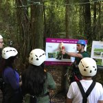 Great education about the effort to preserve the NZ wildlife