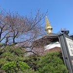 Photo of Isshinji Temple