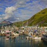 For a lovely stroll, walk the docks along the Kodiak waterfront