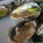 Yummy oyster plate