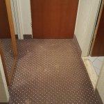 diverse Flecken auf dem Teppich