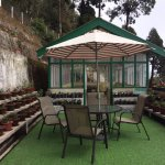 Central Nirvana Resort, Darjeeling Foto