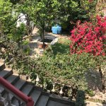 Full view, from my room, of one of the gardens at Krishna House.