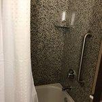 Photo de Holiday Inn Express Hotel & Suites Detroit-Novi