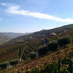 The vineyards and the winery at Quinta dos Poços