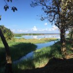 Bild från Rio Drake Farm