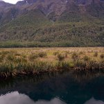 Fiordland Park - Mirror Lake