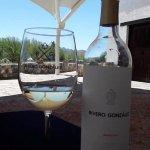 Excelente vinos blancos !