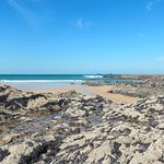 Rockpools to discover at low tide
