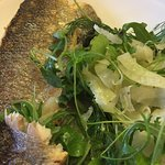 Sumac & Lime Sea Bass with Coriander & Fennel Salad