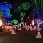 Evening Wedding Party