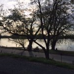 Foto di American River Bicycle Trail
